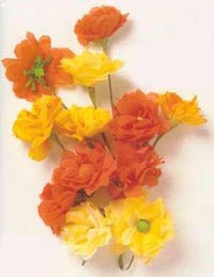 Giallo e arancione per questi fiori
