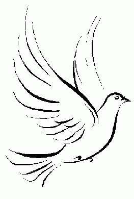 Pasqua colomba 4