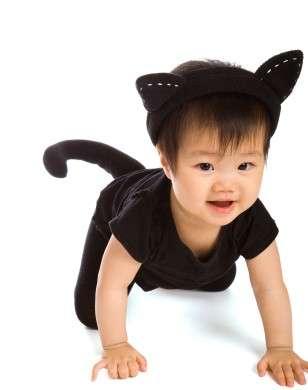 Travestimento da gattino