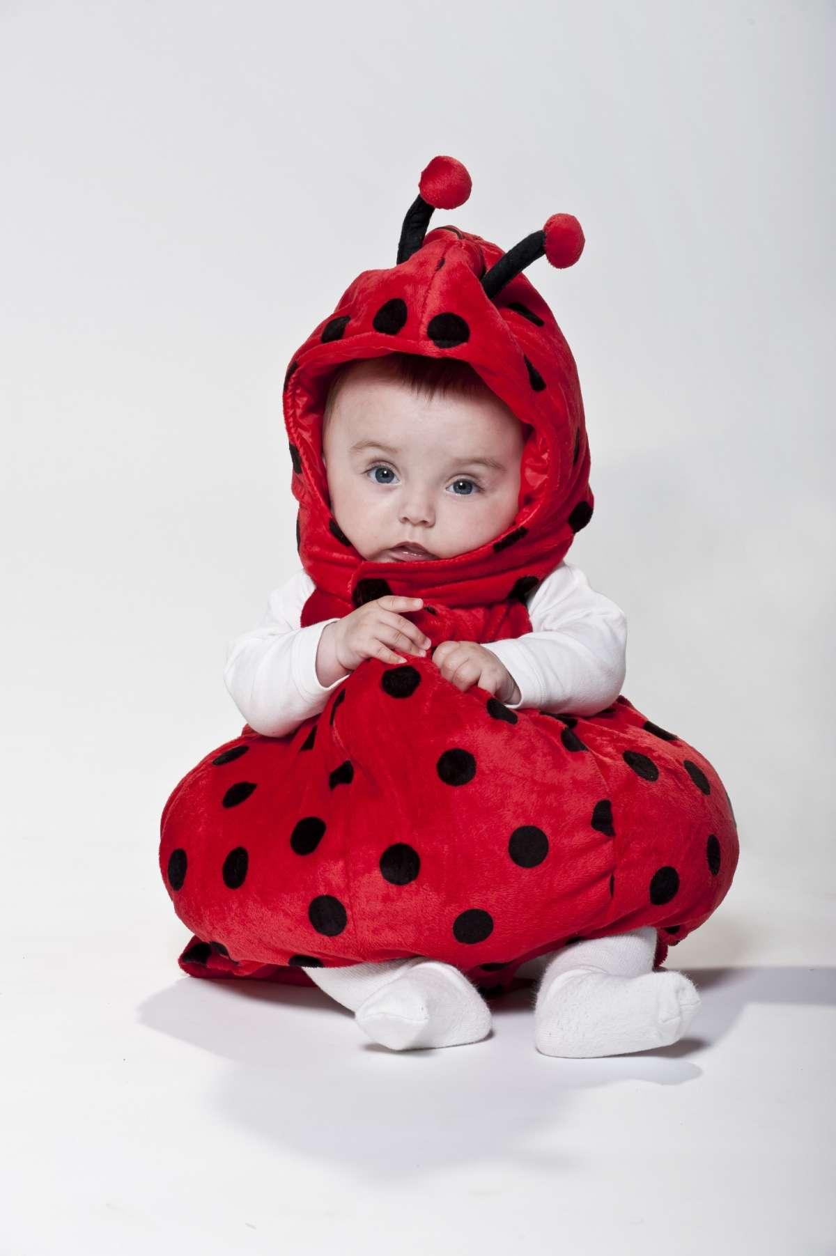 Dolce coccinella di Prenatal