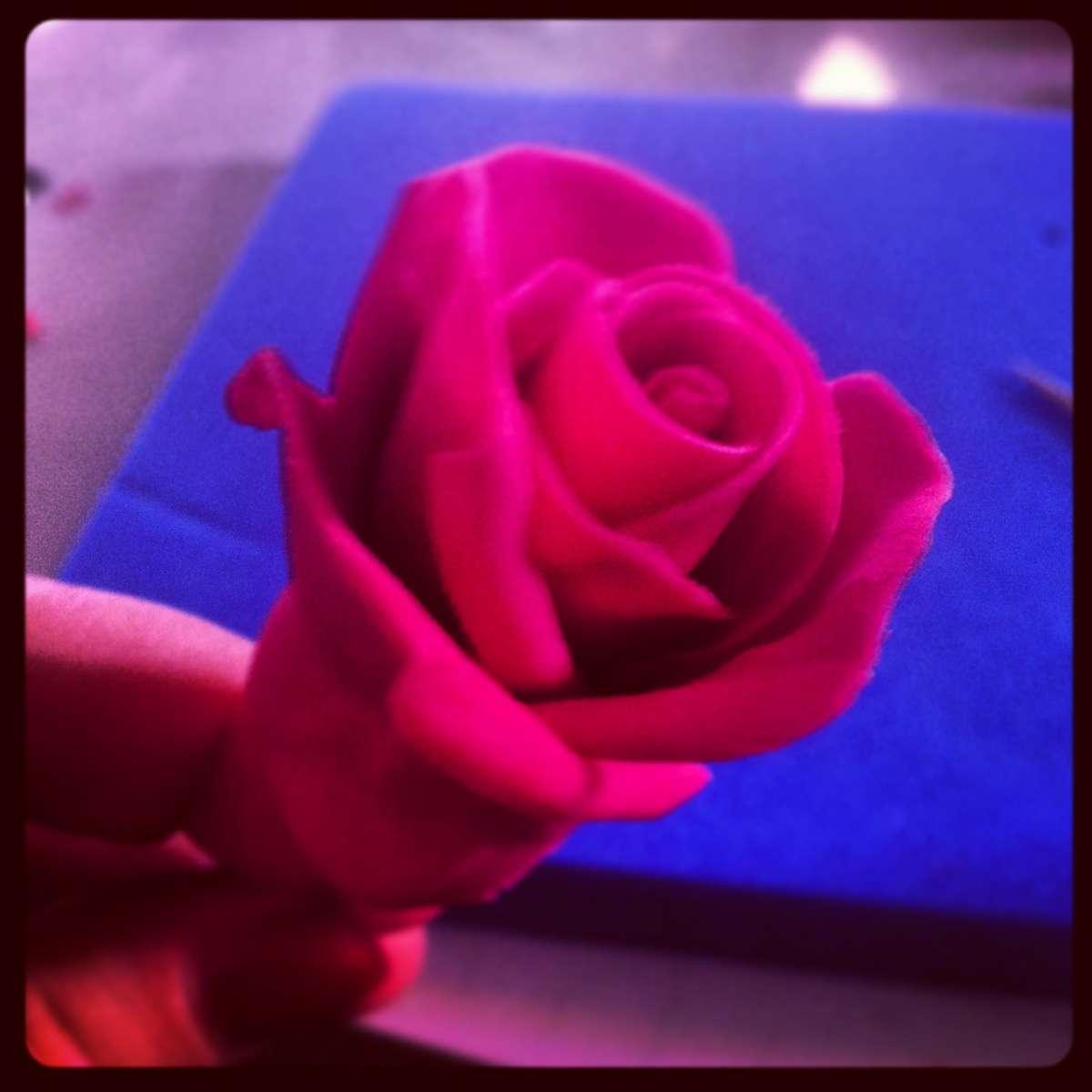 La rosa in pasta di zucchero di Pourfemme