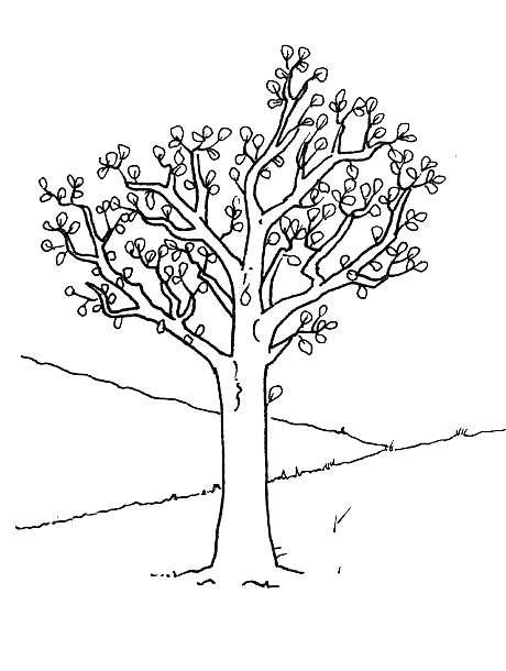 Disegno per la primavera con un albero
