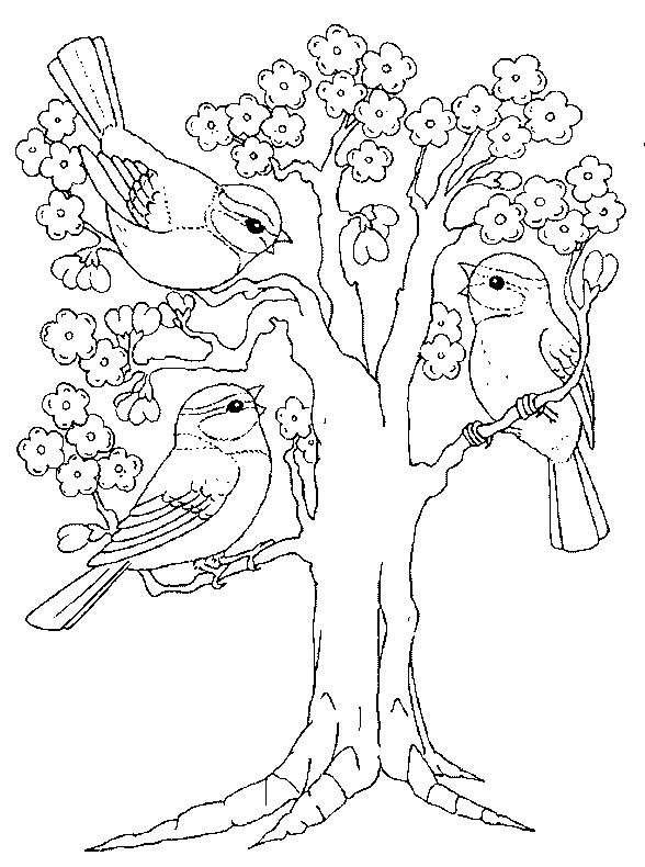 Disegno primaverile per bambini con albero fiorito