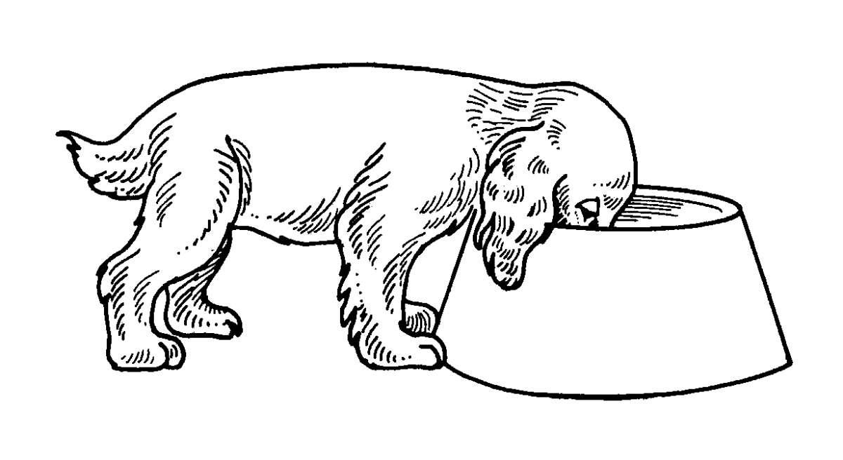 Disegno con un cane