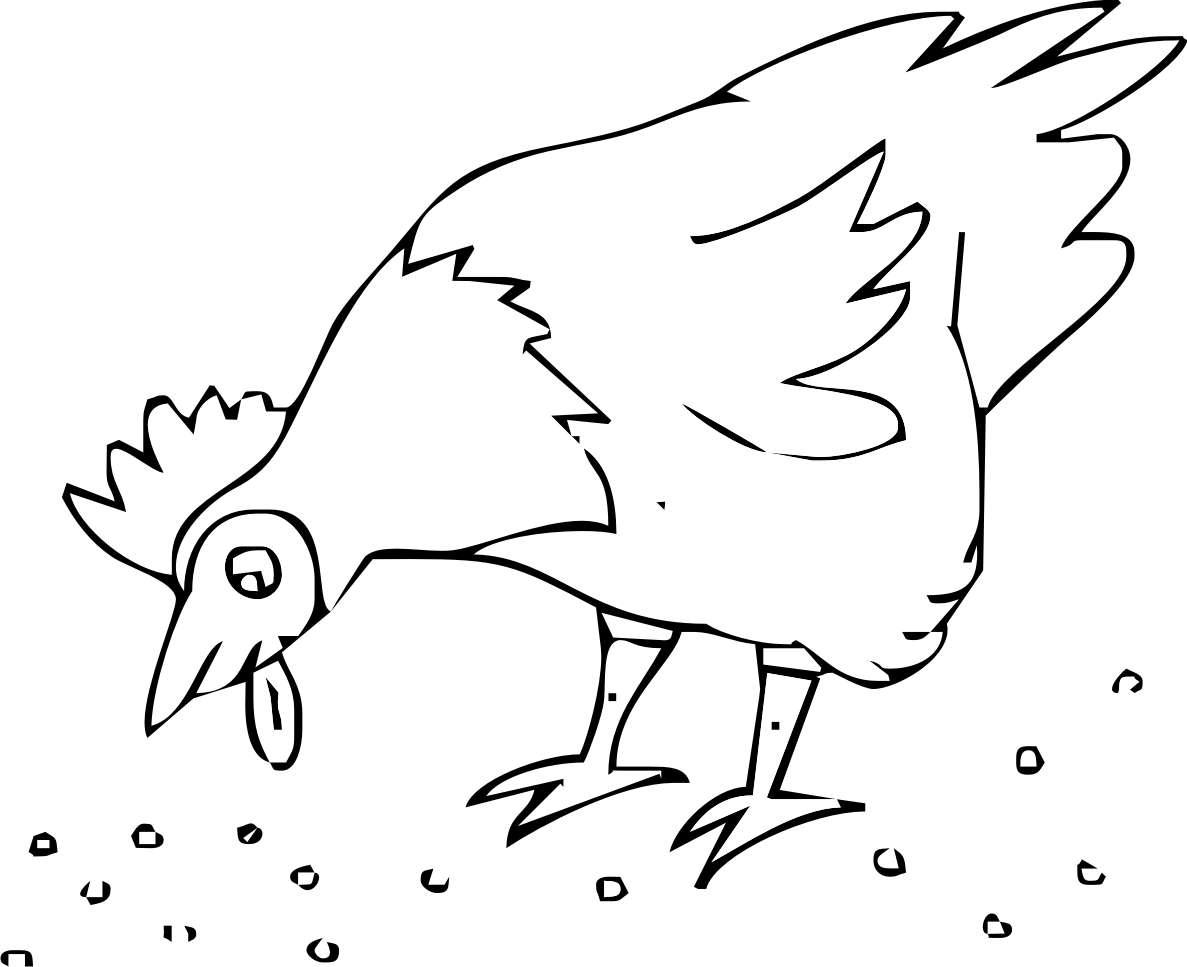 La gallina da colorare