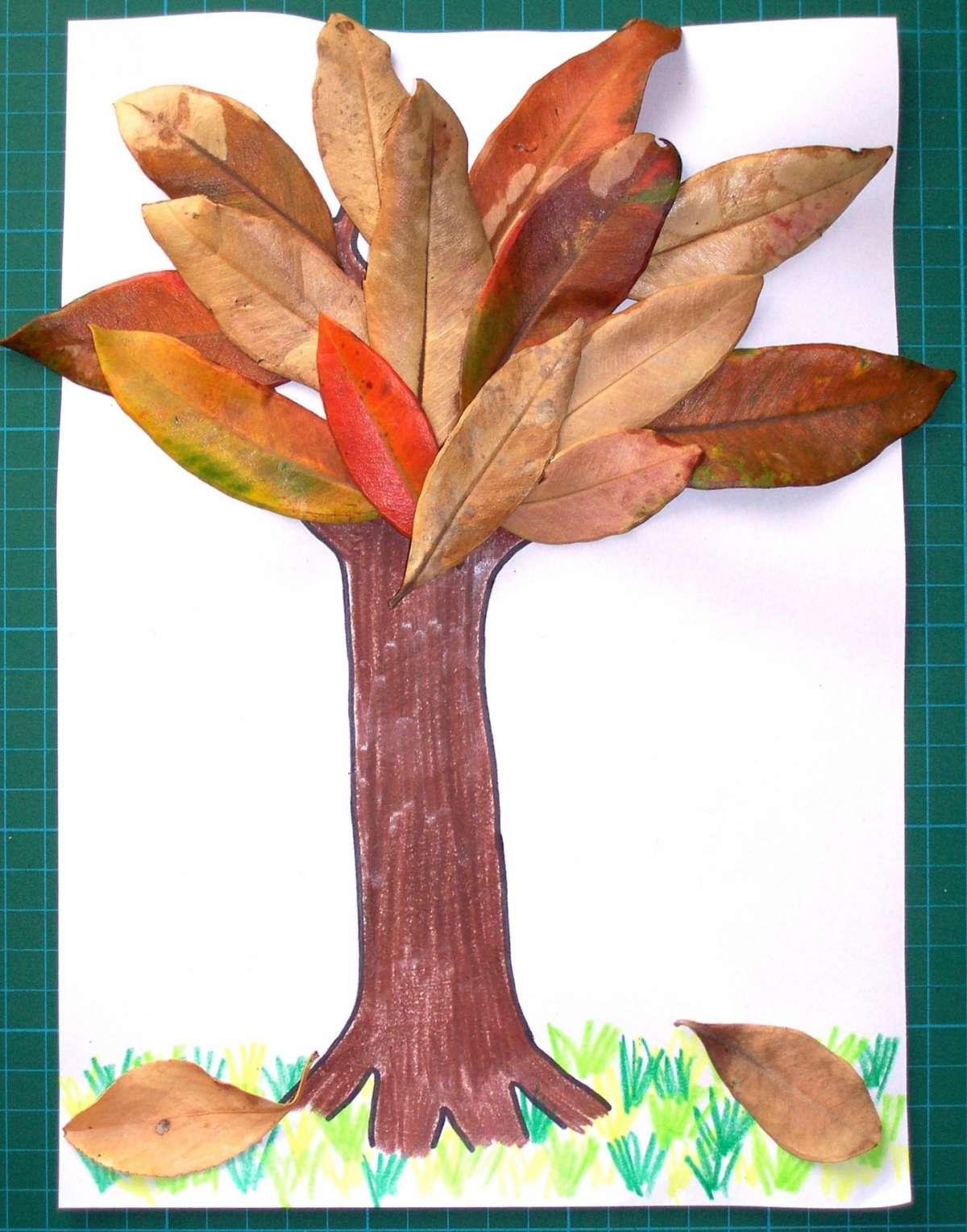 Albero con le foglie