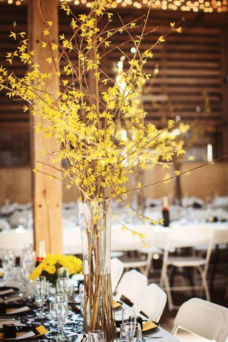 Forsythia per il matrimonio d'inverno