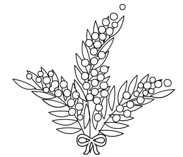 Disegno di una mimosa