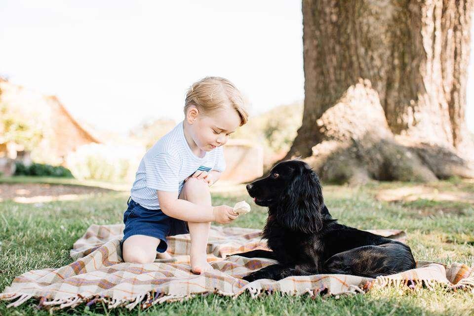 Il Royal Baby gioca con il cane Lupo
