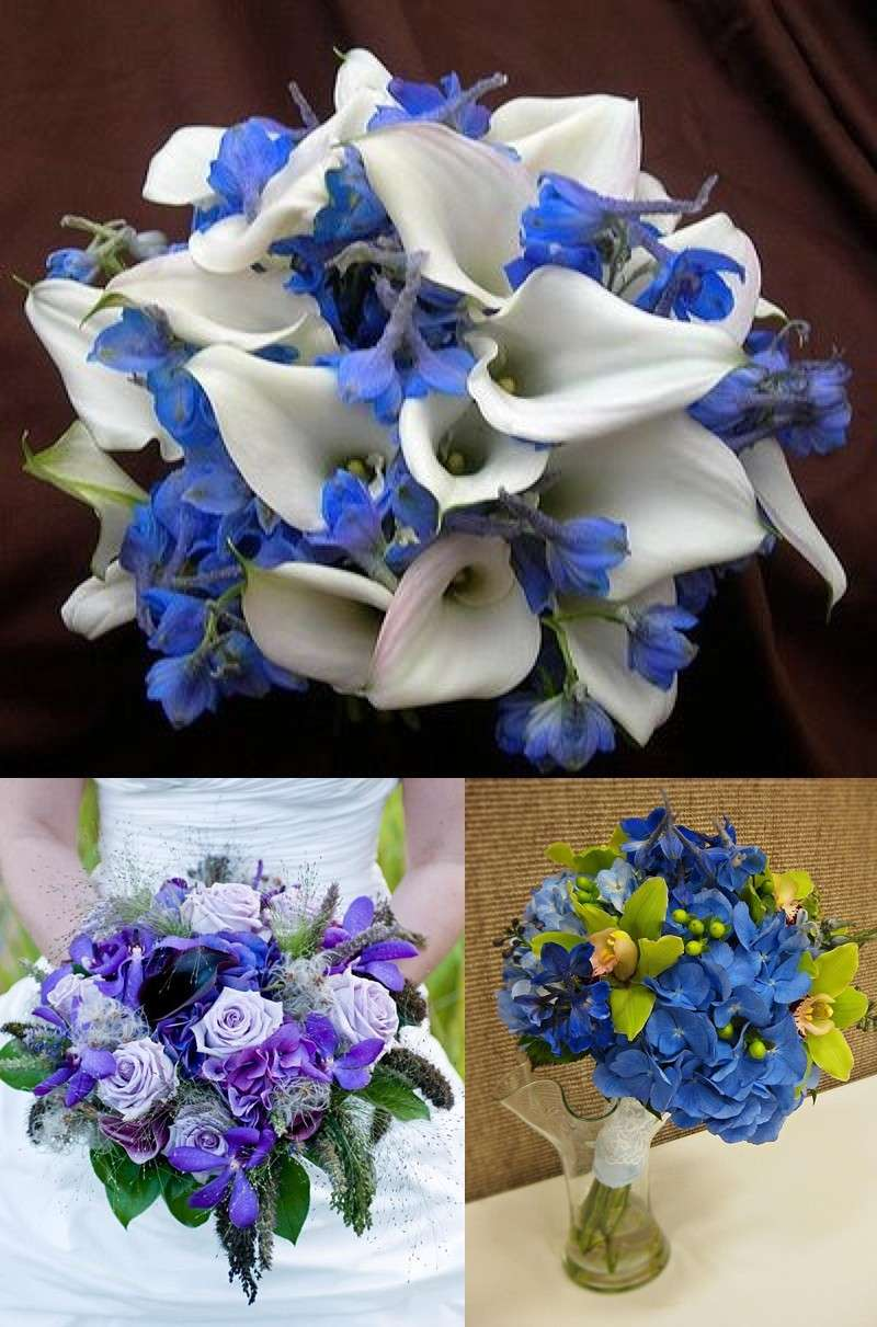 Fiori bianchi e azzurri