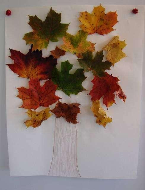 Albero di foglie