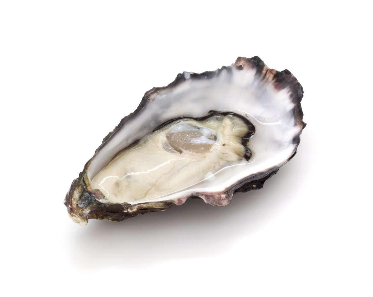 Alimenti ricchi di zinco, ostriche