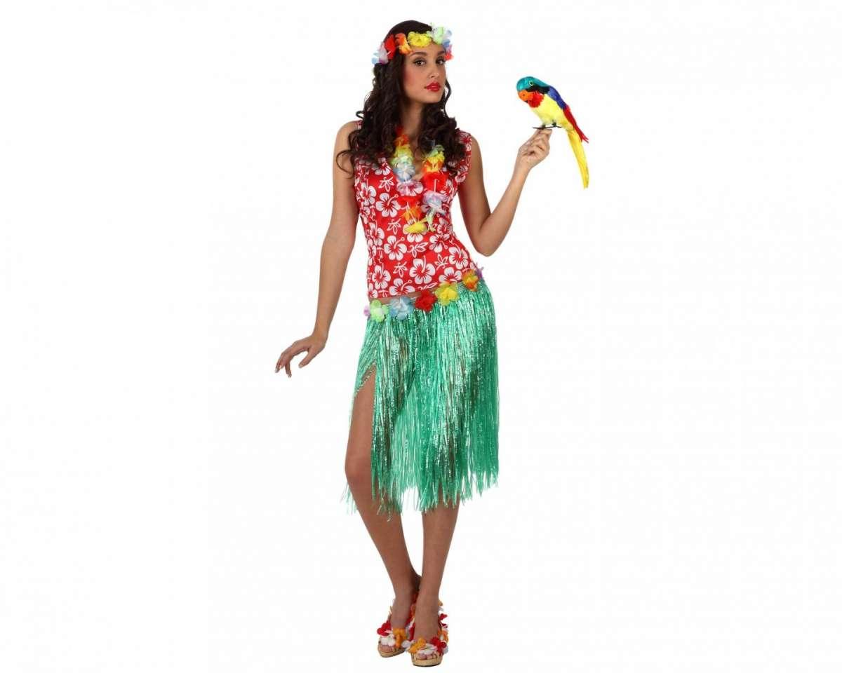 Costume da Hawaiana
