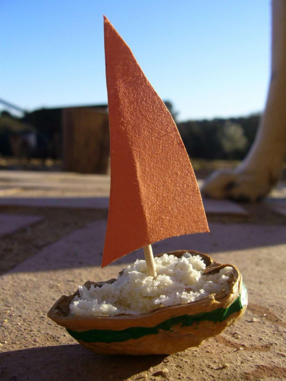 Barca con guscio di noce