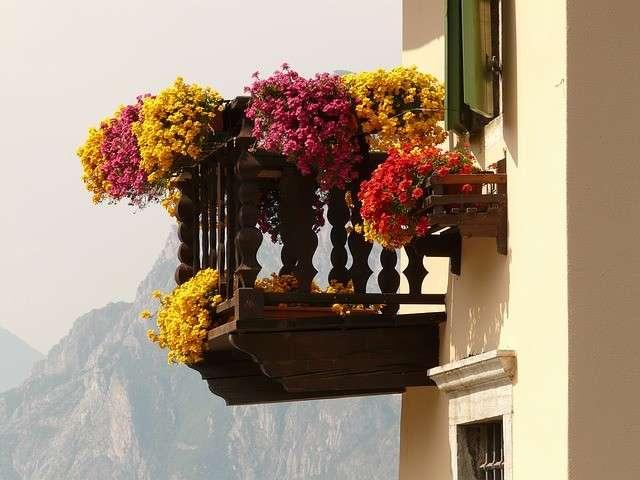 Balconi con i fiori pendenti