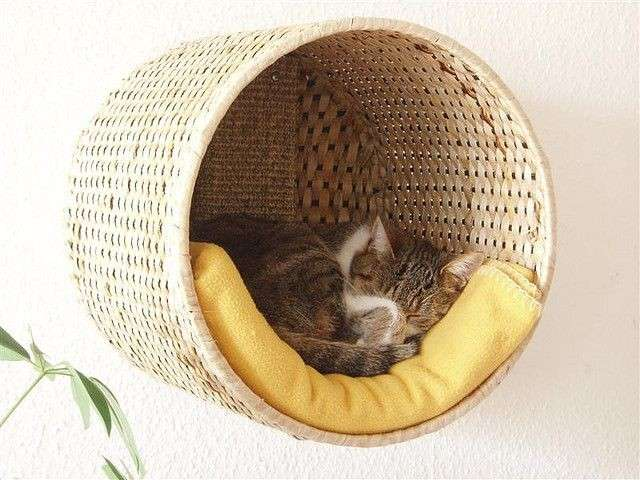 Cuccia per il gatto fai da te