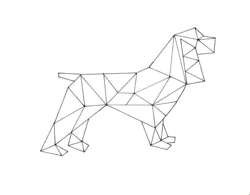 Disegno di un cane