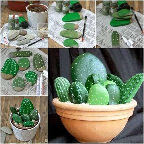 Cactus con sassi