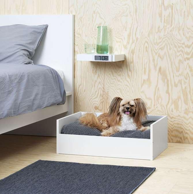 Cuccetta IKEA per cane