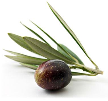ricetta olive