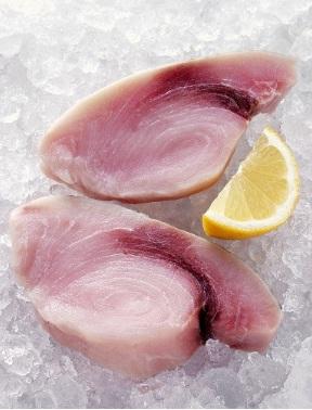 Pesce spada con fave e finocchietto