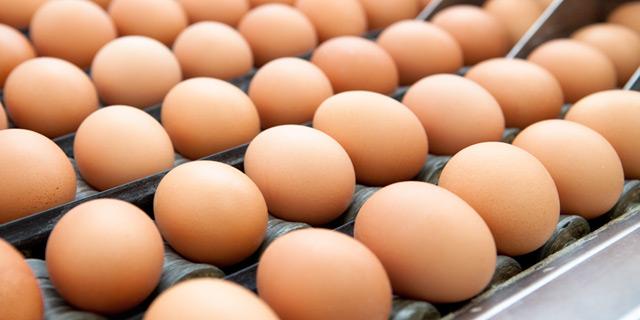 uova bellezza